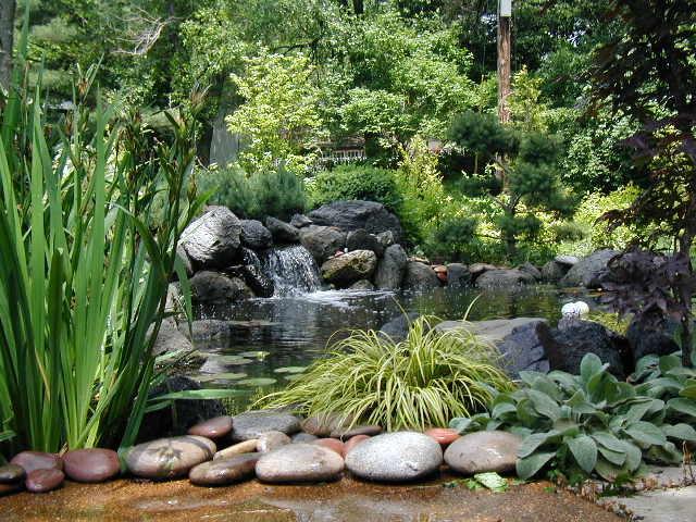 Friedinger pond.JPG