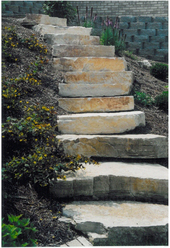 Steps Picture 2 .jpg