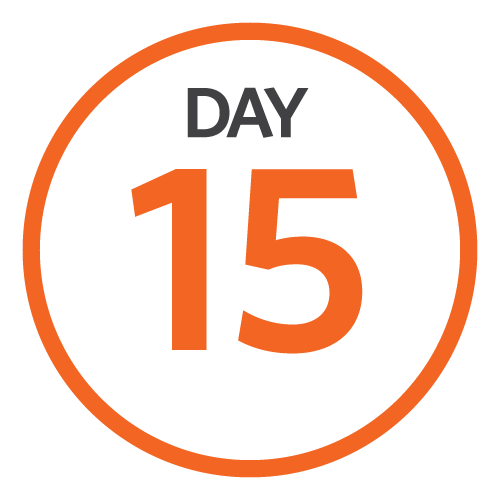 Day15_Image.png
