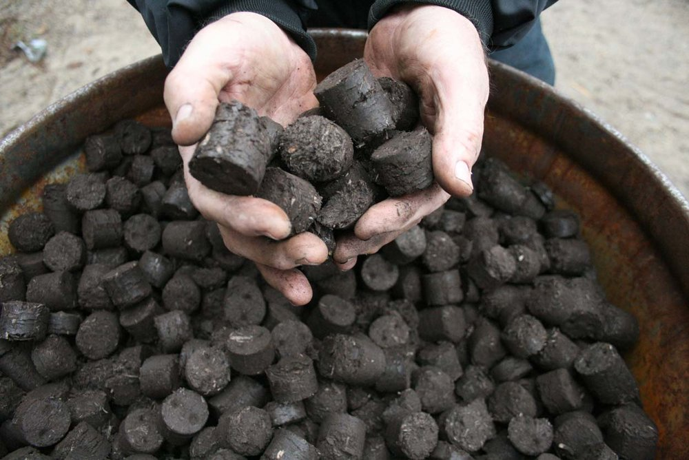 "Larger, ""stoker coal-sized"" torrefied biomass pellets. NRRI Photo"