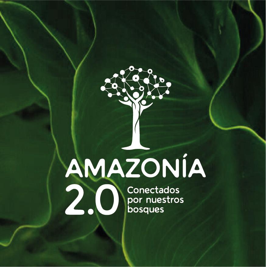 Amazonia 2.0