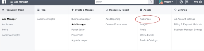 Visit the Audience section of Facebook ads manager.