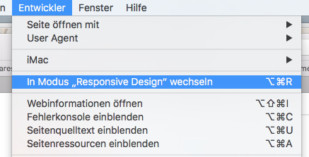 Entwickler Modus - Apple - Safari