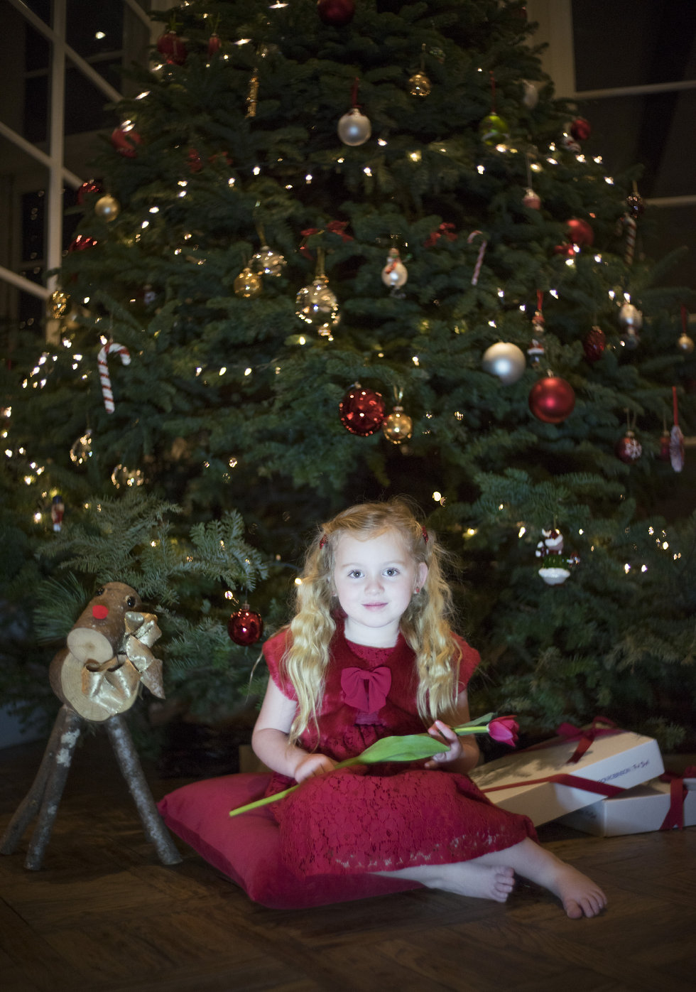 Monday Lily last year in front of the tree