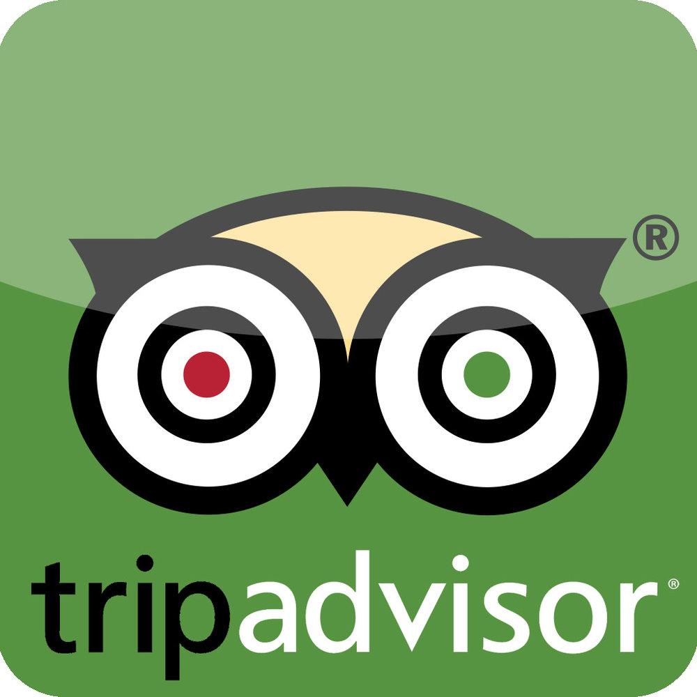 tripadvisor-app-logo.jpeg