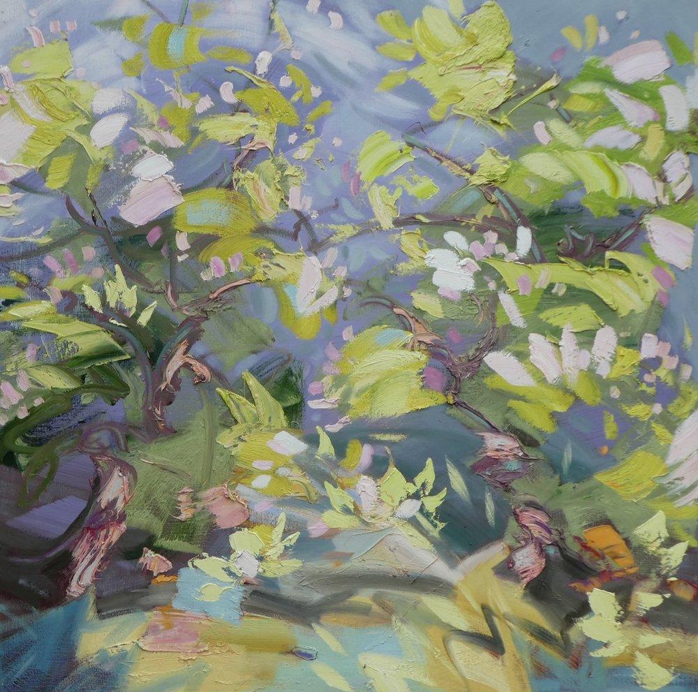 Magnolia - 100 x 100cm