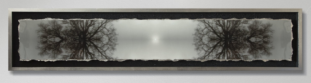 Size: 172x36cm Set in resin and framed with charcoal created from the Symmetree Oak