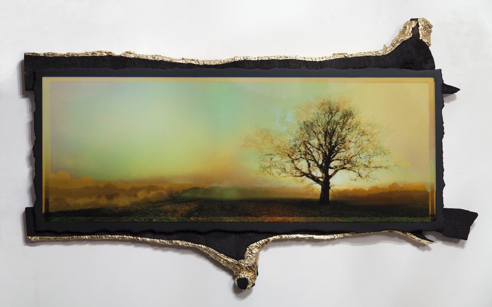 Print on paper in resin Oak frame crafted from the tree Frame finished in shou sugi ban and gold leaf 150 x 90cm