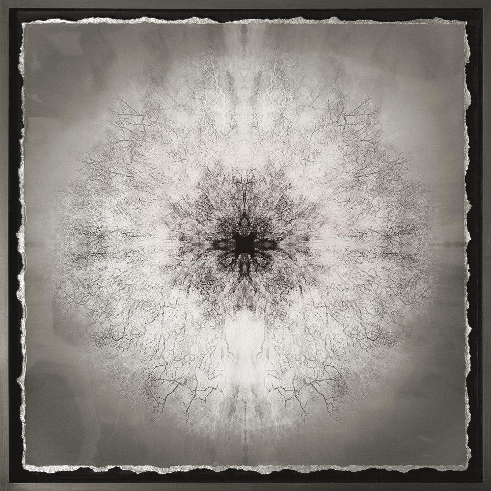 Symmetree - Tesla's Vision I  Print on paper in resin with tin leaf Graphite frame 78 x 78cm