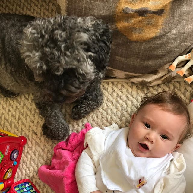 Dogs and babies. #lifecantgetanybetter