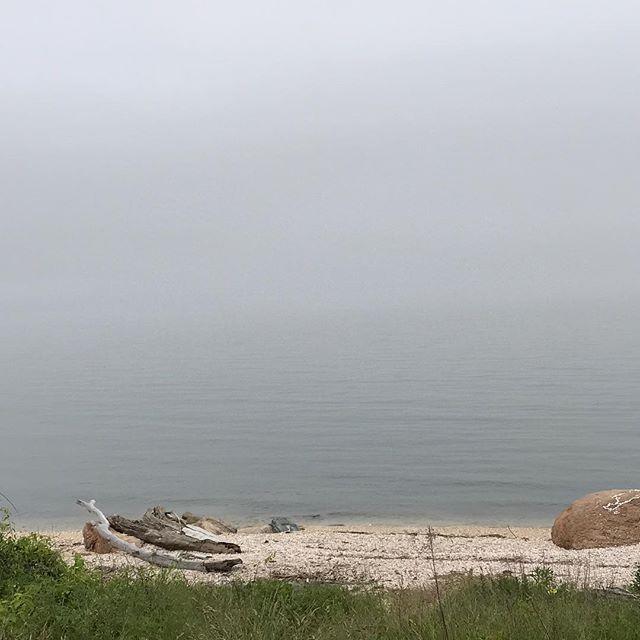 Searching for the horizon. #northfork #longislandsound #fog #summer17