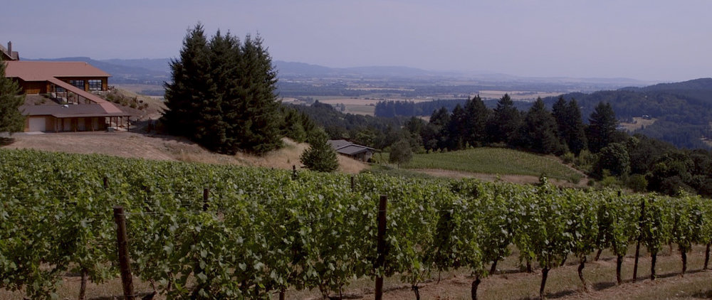 Yungberg Hill, Oregon Wedding Video - NW Creatives-13.jpg