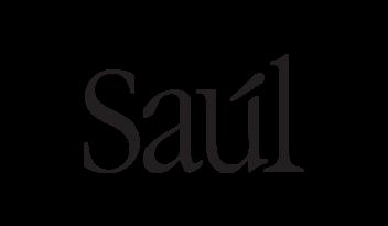 saul 3.png