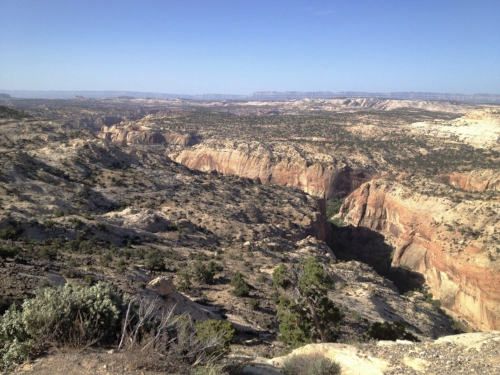 Calf-Creek is in that canyon.