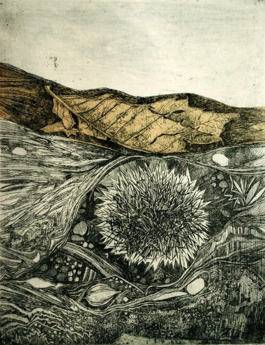American Chestnut, Intaglio with chine colle, 2015