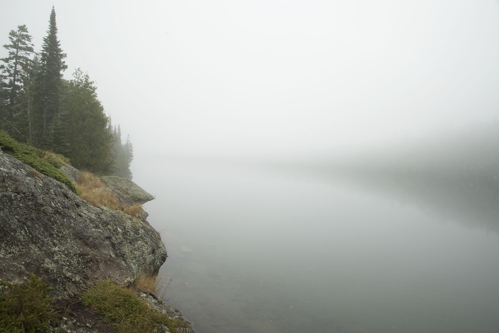 Foggy Cove