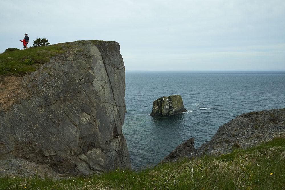 Sea Cliffs I