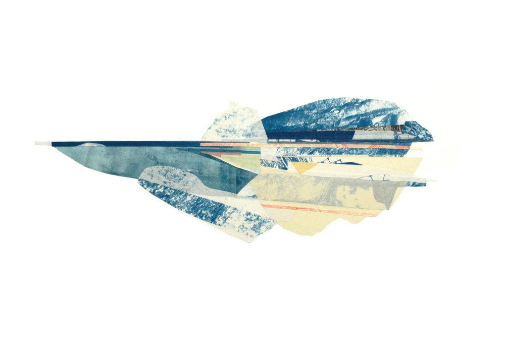 02_Iceberg_Rose.jpg