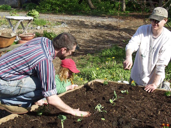 Planting community gardens in Sitka, Alaska.