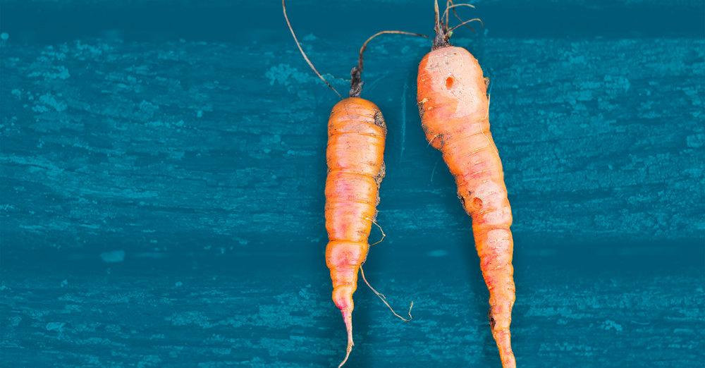Food-Stamps2_carrots-1200x627-linkedin.jpg