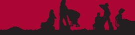 AMCHP-logo.png