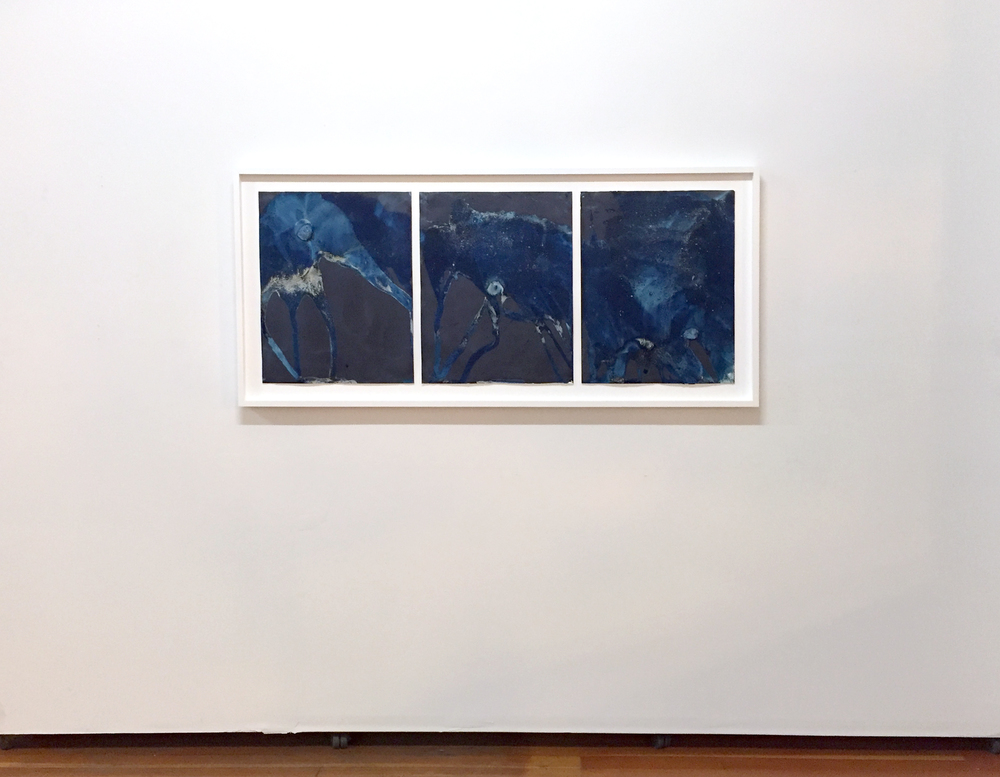 Installation view of Littoral Drift, December 10, 2015 - February 3, 2016 at SF Camerawork, San Francisco, CA