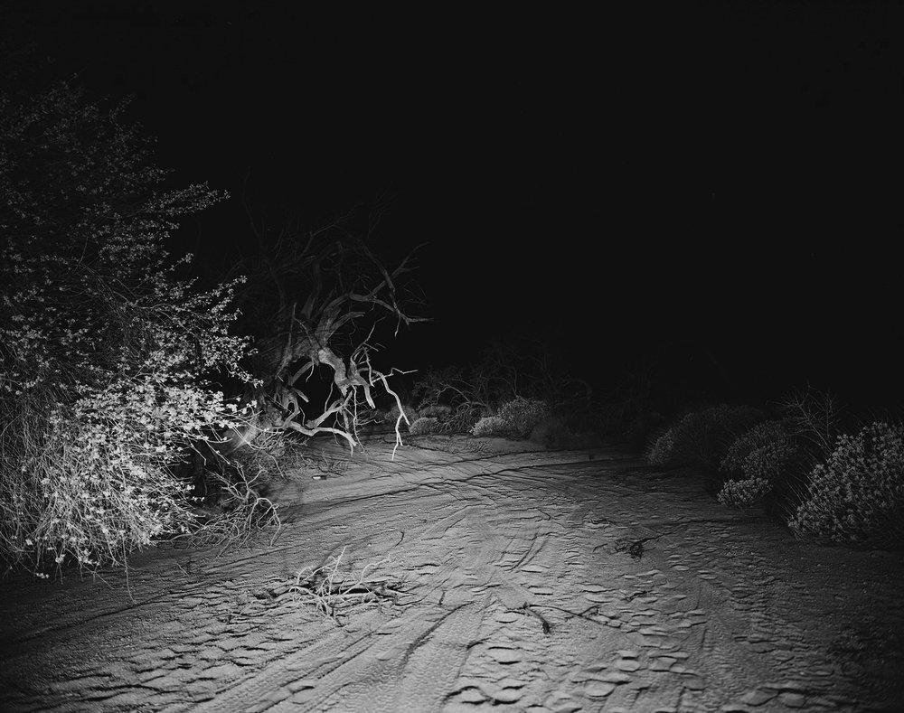 scott b. davis  tinajas altas mountains, arizona,  2015/2016 platinum/palladium print 21 x 25 inches  edition 1/5