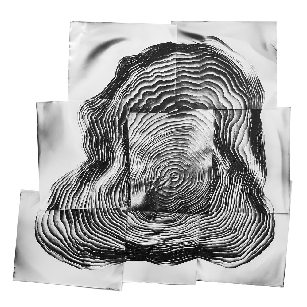 KLEA MCKENNA Motherland #2, 2017  Photographic rubbing. Unique gelatin silver photogram.  5 x 5 feet