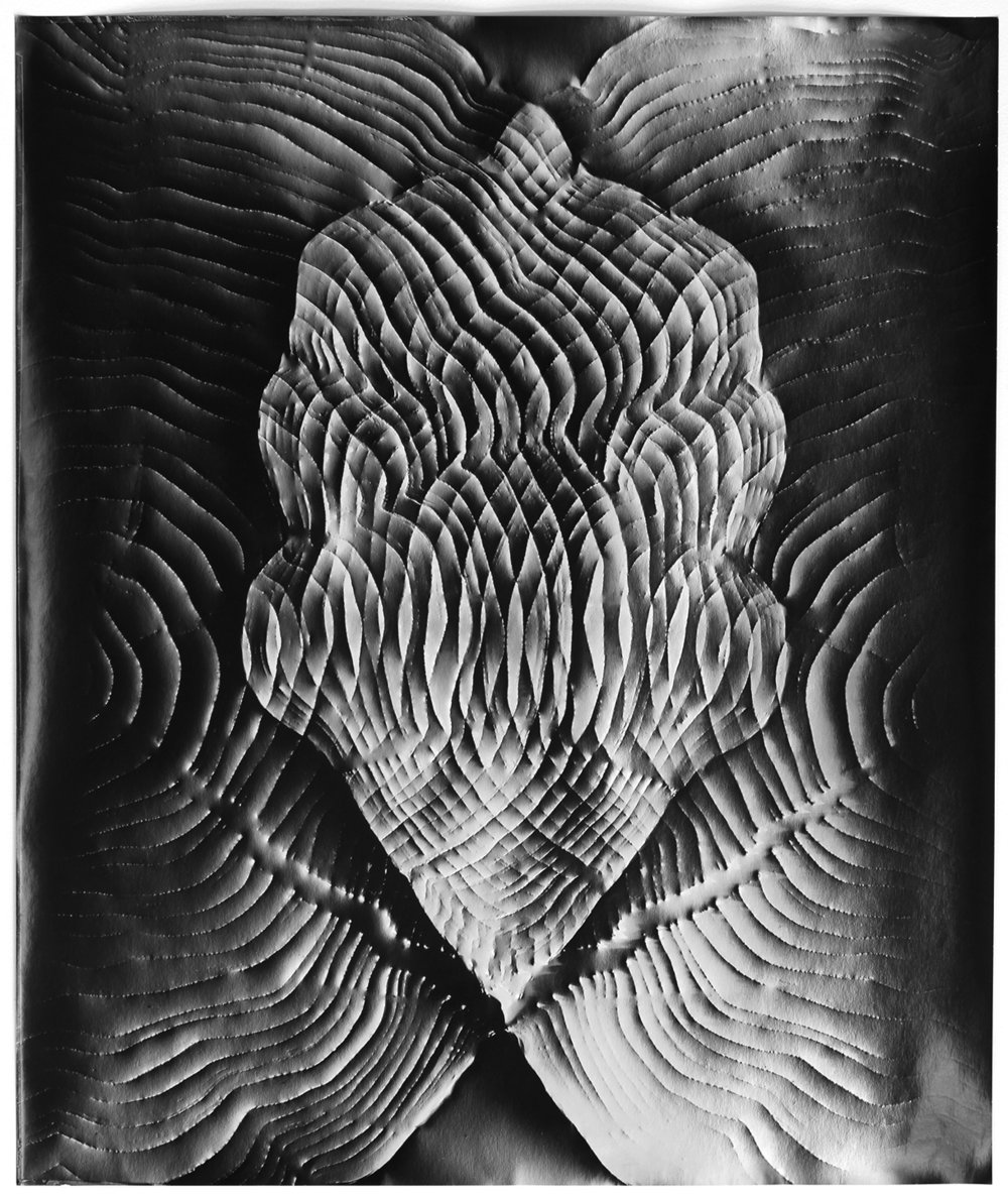KLEA MCKENNA Automatic Earth #80, 2017 Photographic rubbing. Unique gelatin silver photogram.  24 x 20 in., frame: 27.5 x 23.5 in.