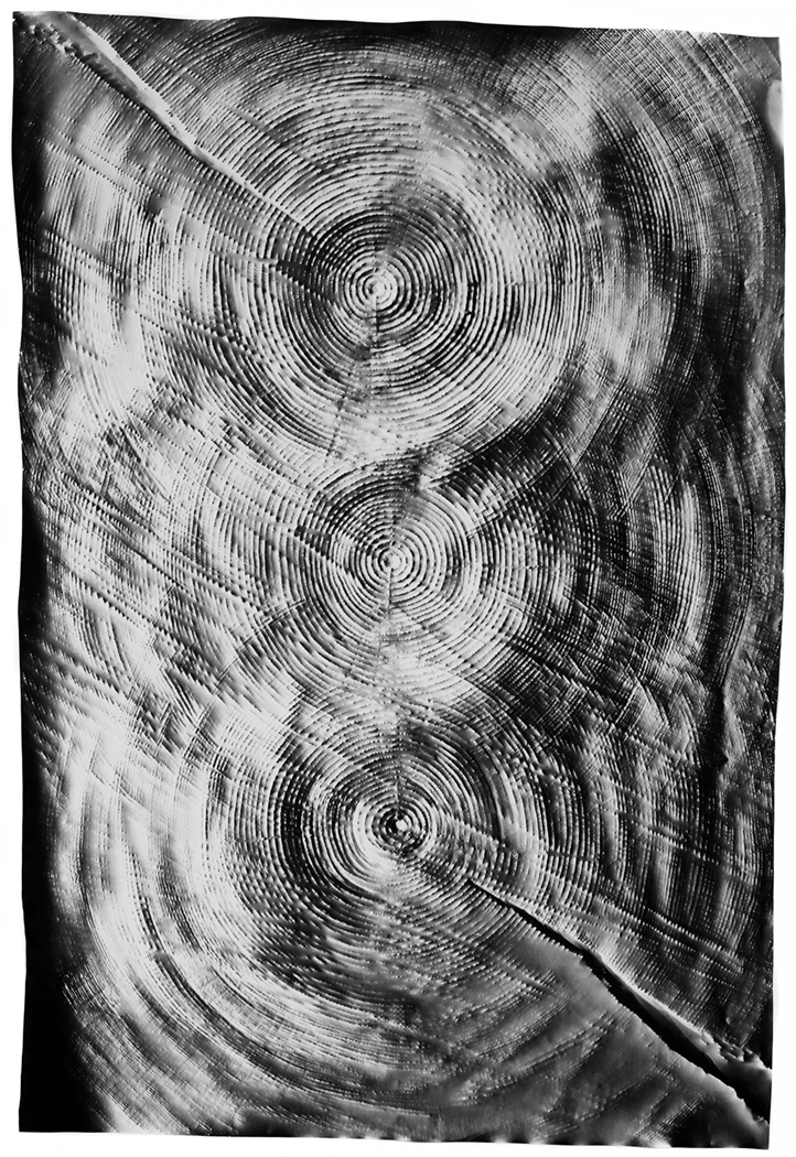KLEA MCKENNA Trinity, 2017 Photographic rubbing. Unique gelatin silver photogram.  42.5 x 29 in., frame: 47 x 33.5 in.