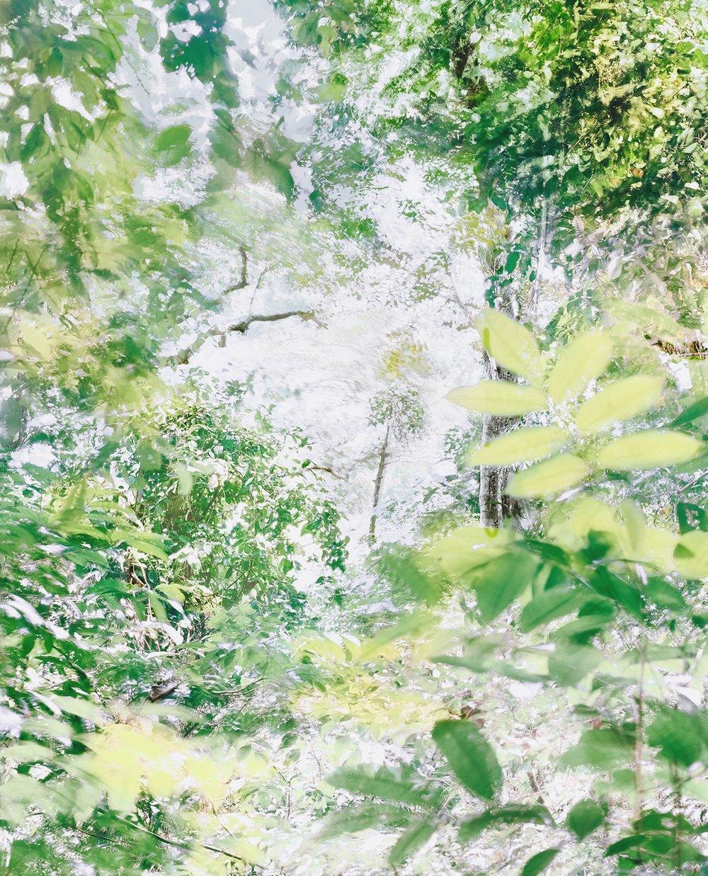 Respiro 17, 2017 37.5 x 30 in Vellum + Archival Inkjet Prints Overlaid