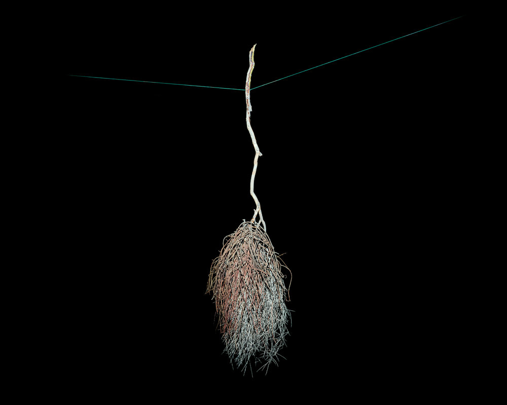 MICHAEL LUNDGREN  Weight, 2009  Archival pigment print  Available sizes 40 x 50 in, ed. 7 + 1AP
