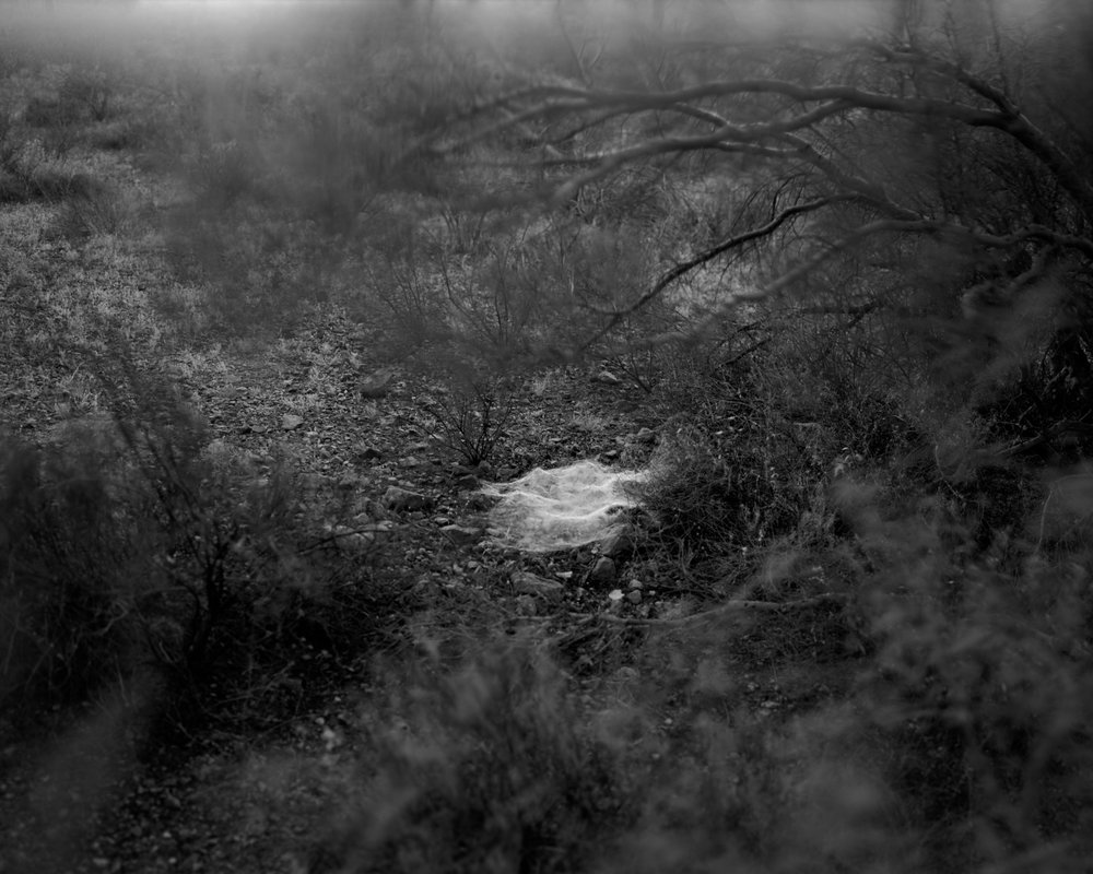 MICHAEL LUNDGREN  Zacatera, 2005  Gelatin Silver Print  Available sizes 20 x 24 in, ed. 10 + 2AP 32 x 40 in, ed. 3 + 1AP