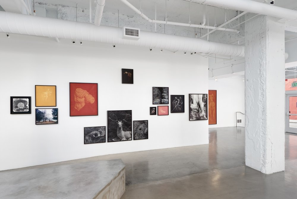Installation of  Even Amaranth  at Gallery Wendi Norris, San Francisco