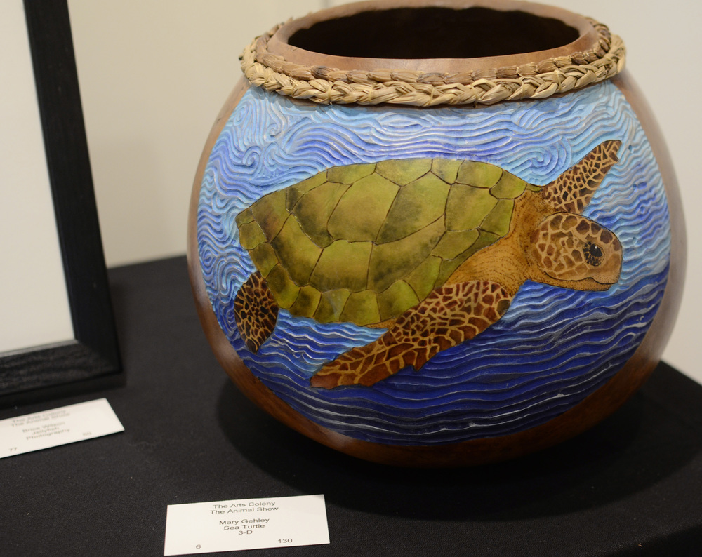 Sea Turtle by Mary Gehley