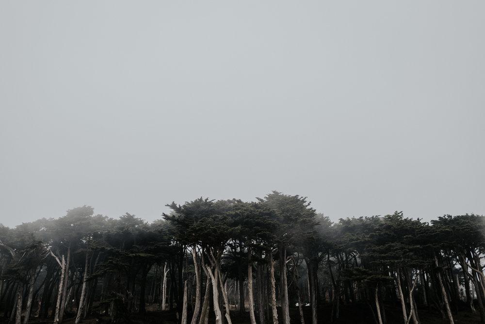 lands end-2.jpg