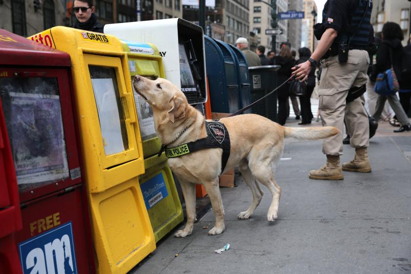 Photo:John Moore/Getty via newyork.cbslocal.com