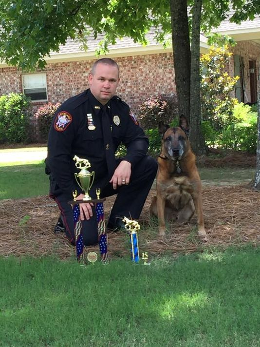K9 Boy;  Photo: Richland Police Dept.