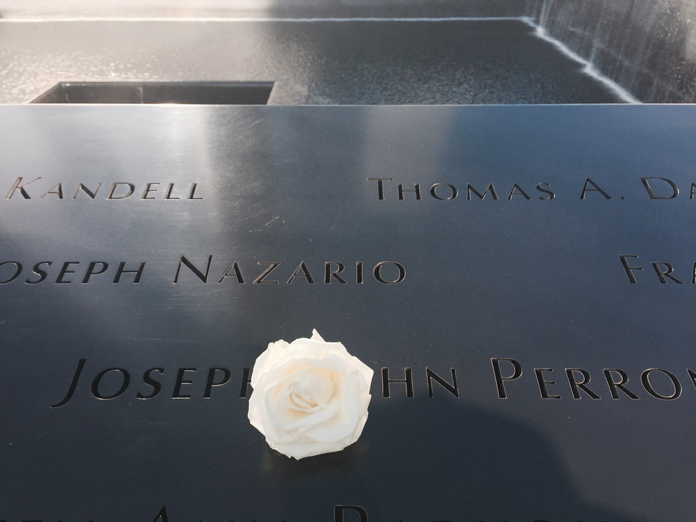 A white rose dedicated to the lost lives of 9/11.
