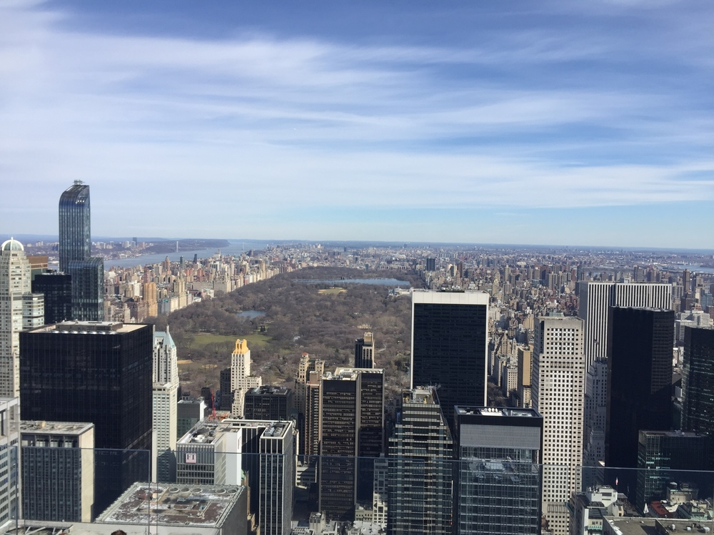 The view of Central Park from the Top of the Rock.