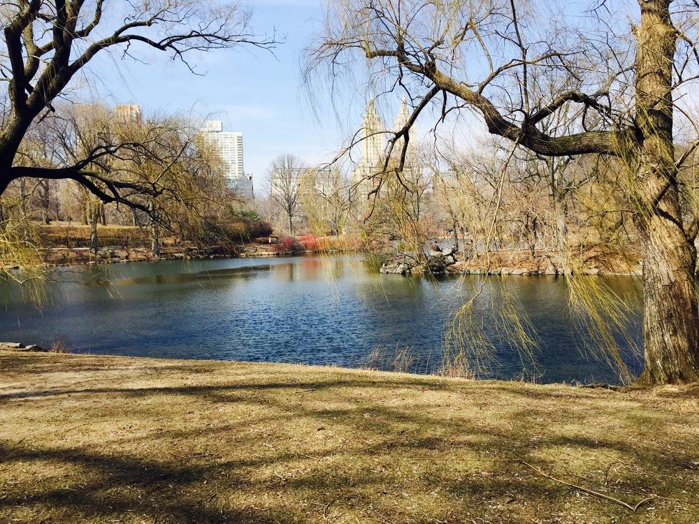 Central Park Lake.
