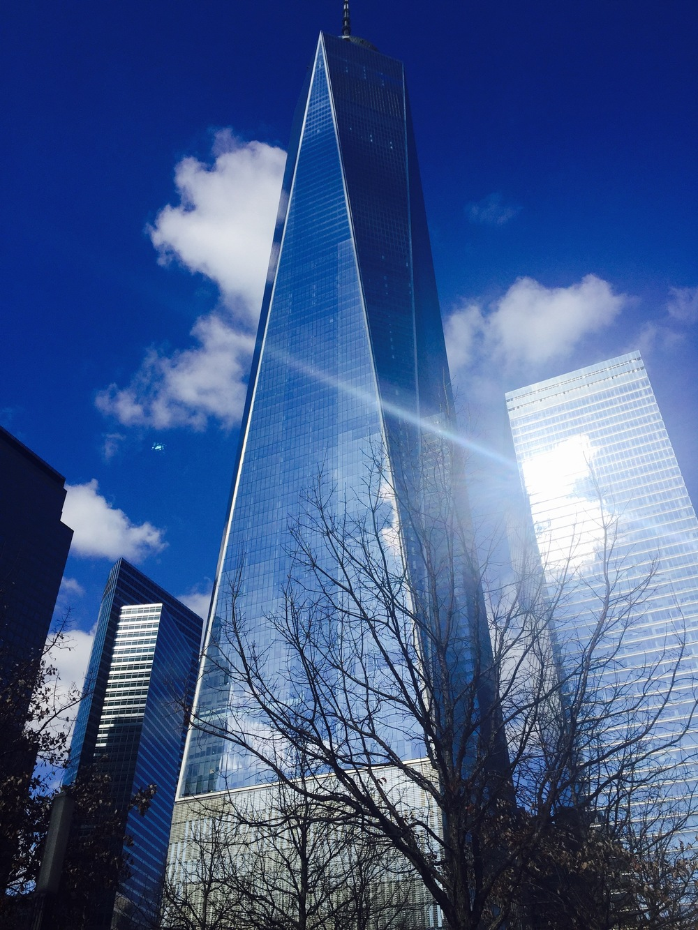 The Freedom Tower (One World Trade Center).