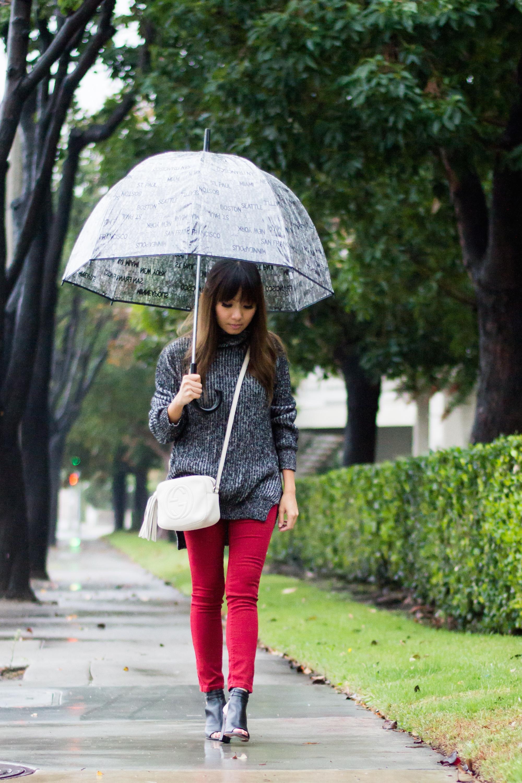 Rainy Day (1 of 7)