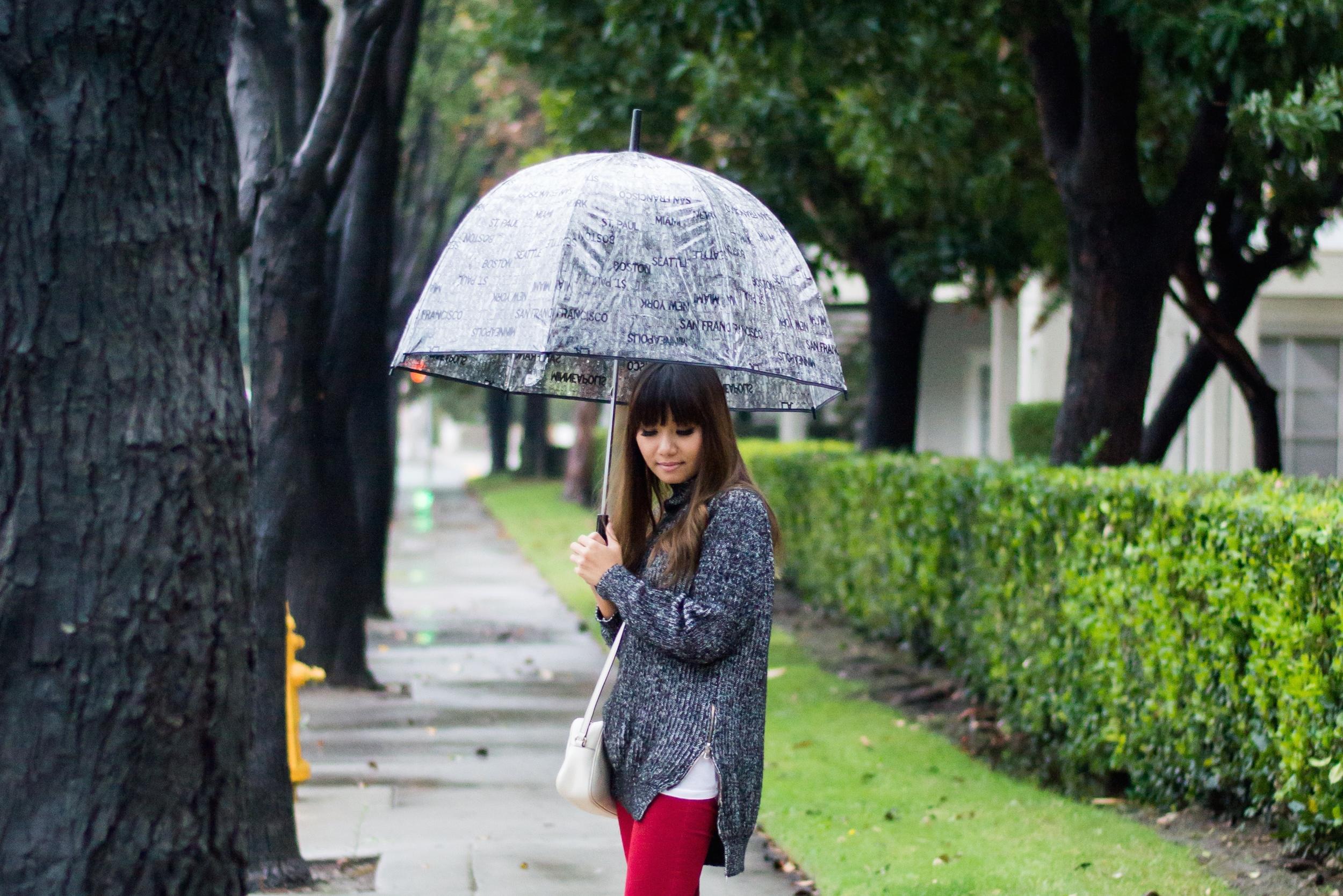 Rainy Day (3 of 7)