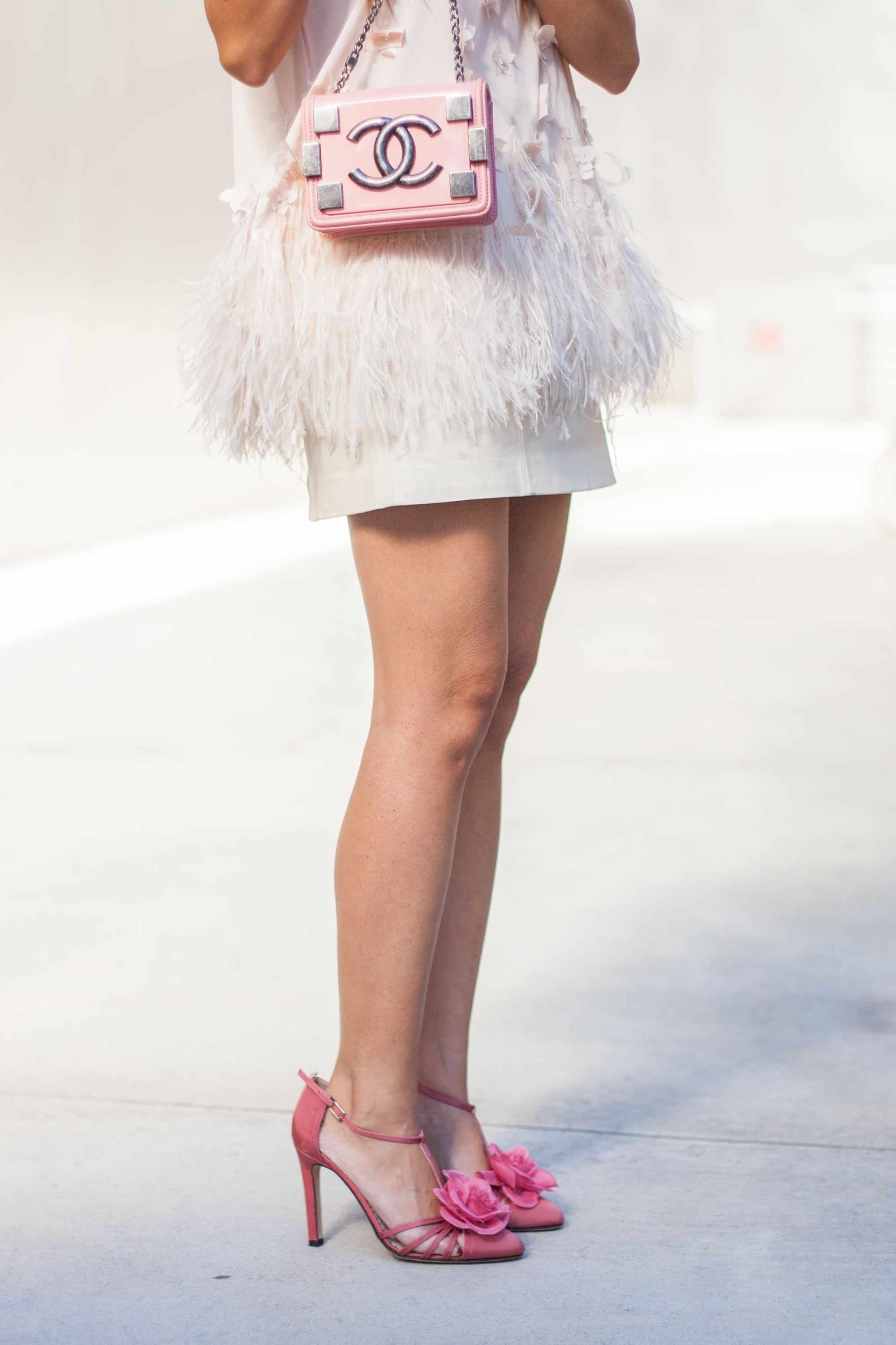 Pink Feathers (9 of 10)
