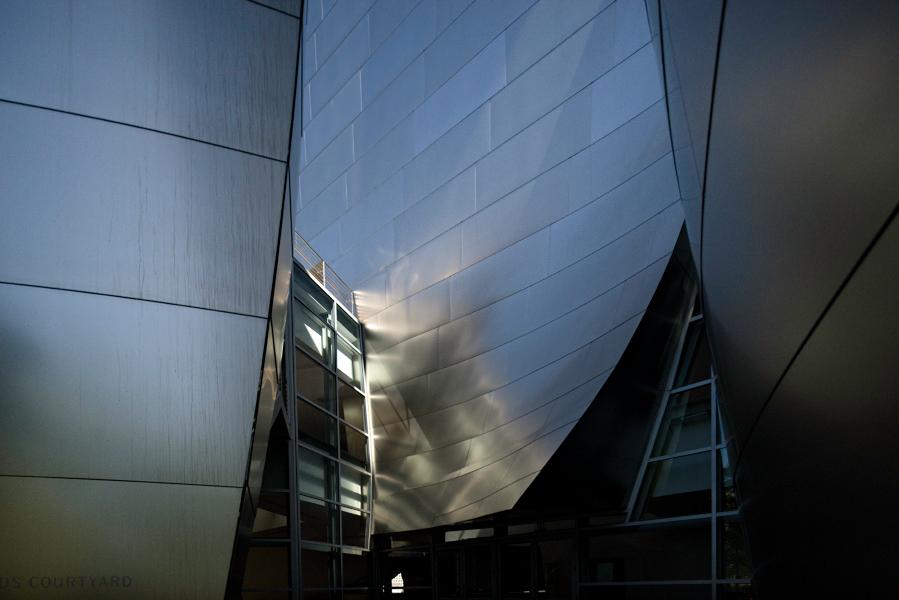 web-Gehry---WDCH0684.jpg