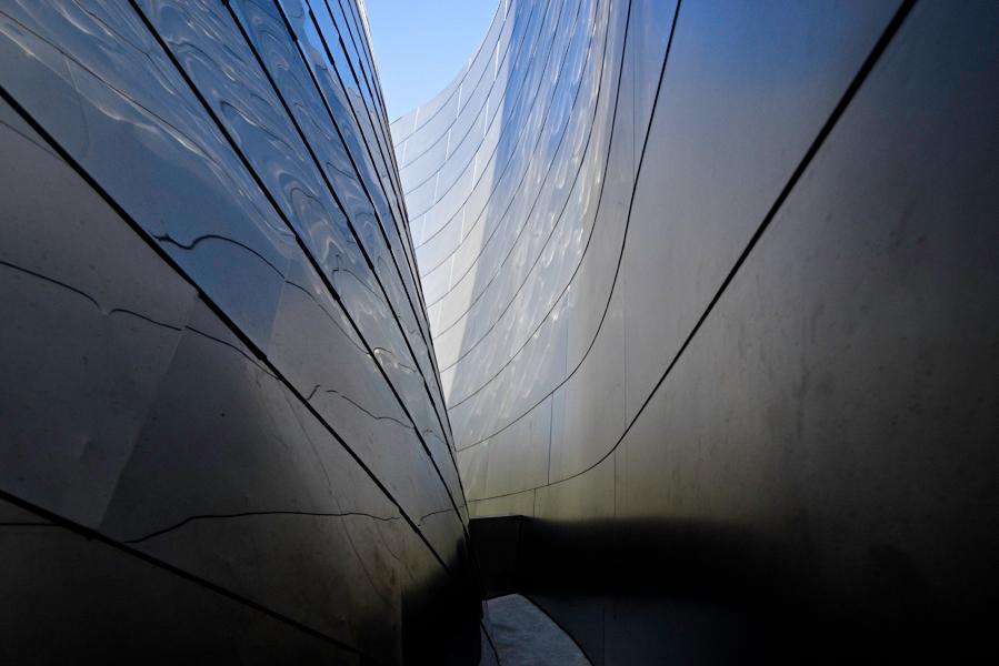 web-Gehry---WDCH0694.jpg