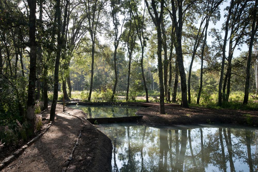 lq bosque - estanque02.jpg