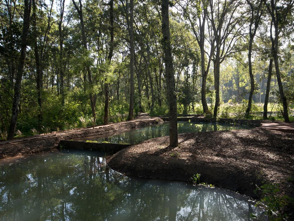 lq bosque - estanque03.jpg