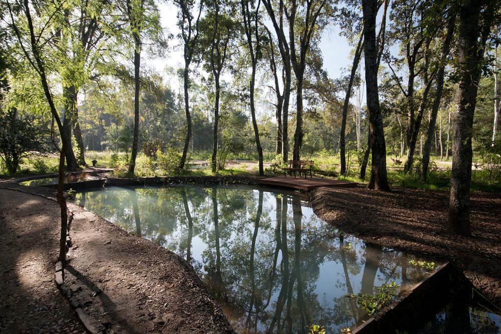 lq bosque - estanque04.jpg